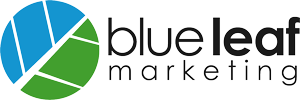blue leaf marketing - coach, speaker, author websites